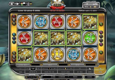 Tortuga Gold Slot Game