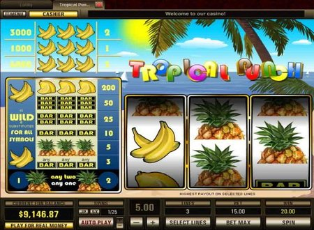 Fruit Punch slot game